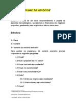 2010 2 - Plano de negócios para CST
