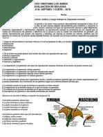 evaluaciuion septimo LICEO CRISTIANO LOS ANDES.docx