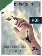 Jodi Picoult - Mici lucruri marete #1.0~5