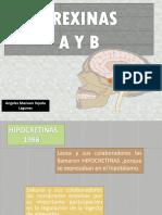 Orexinas Hipocretinas a y b