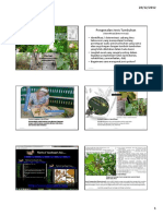 Pengenalan Jenis Mangrove Printed