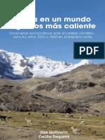 Contaminacion Del Lago Titicaca