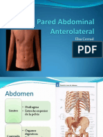 Pared-Abdominal-Anterolateral.pdf