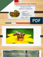 ENFERMEDADES_ABEJAS_ADULTAS[1].pptx