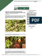 Tabuleiros Litorâneos Produzem Alimentos Orgânicos e Trazem Desenvolvimento Para o Piauí - Capital Teresina