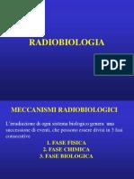 3-radiobiologia
