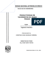 Productividad en Yacimientos de Crudo Pesado, Christian González, 2016, Unam