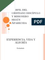 06 Perfil del cristiano discípulo y misionero P. EDUARDO ORTIZ.pptx
