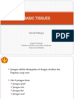 2. Basic Tissues