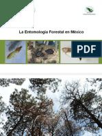 Bichos_Presentacion.pdf