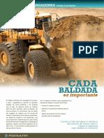 ProVision-Loader-Flyer-Spanish-A4.pdf