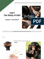 A&P I - Unit I - Powerpoint