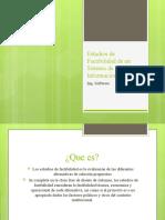 Estudios de Factibilidad de un Sistema de Información michelita