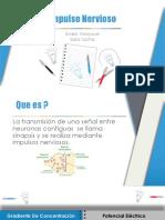 Impulso Nervioso (1) (1) (1).pptx