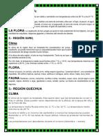 LAS REGIONES NATURALES DEL PERU.docx