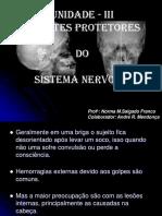 04_agentes_protetores.pdf