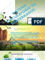 SISTEMA CIRCULATORIO EN VERTEBRADOS.pptx