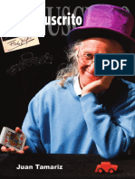 lowmanuscrito11.pdf