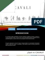 CAVALI.pptx