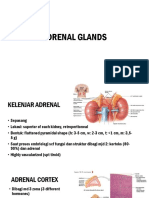 Adrenal glands.pptx