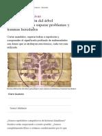Biodecodificación Del Árbol Genealógico