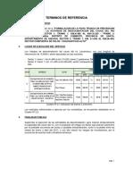 tdr__presupuesto__formulacion__5.pdf