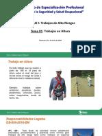 Presentacion CELAEP-Trabajos en Altura