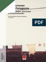 Migraciones en la Patagonia - Barelli y Dreidemie