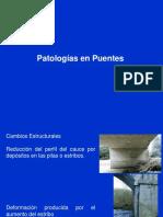 3d Patologias en puentes.pdf