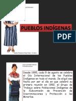 LOS PUEBLOS INDIGENAS.pptx