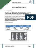 PRIMER-PREMOLAR-INFERIOR.docx