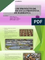 Ideas de Proyecto de Inversión en La Provincia