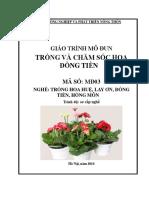 Giáo-trình-Trồng-và-chăm-sóc-hoa-đồng-tiền.pdf