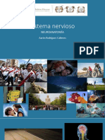 11 Sistema Nervioso y Morfología Externa