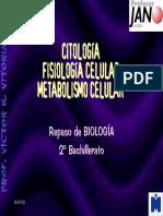 REPACITO.pdf