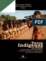 LIVRO - Povos Indígenas No Brasil - Perspectiva No Fortalecimento de Lutas e Combate Ao Preconceito Por Meio Do Audiovisual