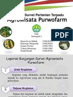 Laporan Survei Pertanian Terpadu.pptx