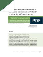 Crimen Organizado y Delitos ambientales