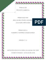 PROYECTO ERIKA 2DO PERIODO.docx