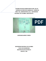 VERSION DE TESIS DE PEDICULOSIS.pdf