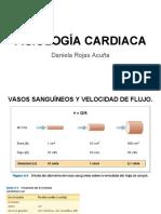 FISIOLOGÍA CARDIACA.pdf