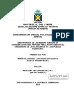 Capitulo i Delincuencia en Republica Dominicana 2016-2