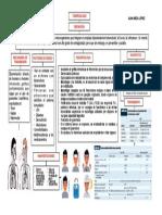 -tuberculosiss.pdf