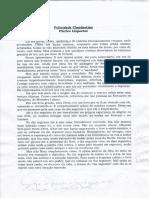 FELICIDADE CLANDESTINA.pdf