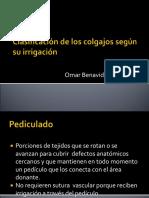 INJERTOS Y COLGAJOS. 5-10.ppt