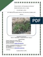 proyecto de ciencias.pdf