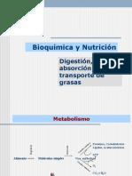 Digestion absorcion metabolismo lipoporoteinas copia.ppt