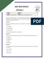 csq.docx