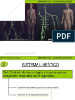 sistema-linfatico.ppt