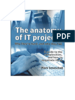Anatomy of IT Projects